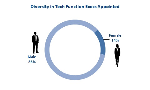 2018 Mar Fig 3 New Tech Execs   Diversity