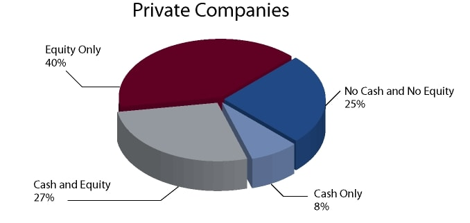 Director Remuneration: Cash/Equity for Private Companies