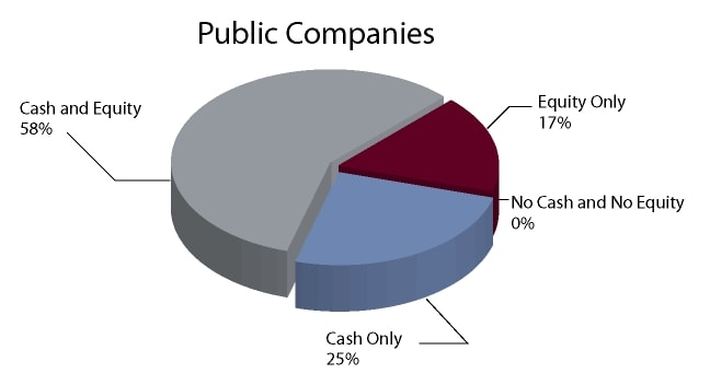 Director Remuneration: Cash/Equity for Public Companies